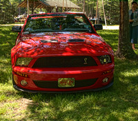 2009 Ford Mustang Cobra