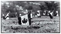 Flags for Canadian War Veterans